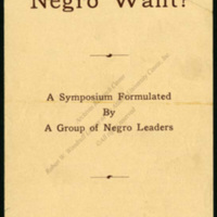 """""""What Does the Negro Want?""""<br />"""